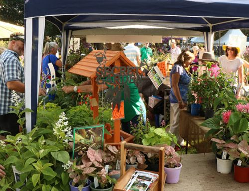 Collector's Plant Fair