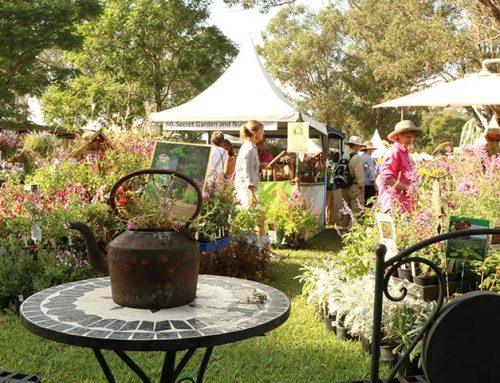 Collector's Plant Fair 2021