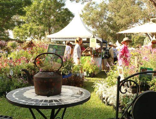 Collector's Plant Fair 2021