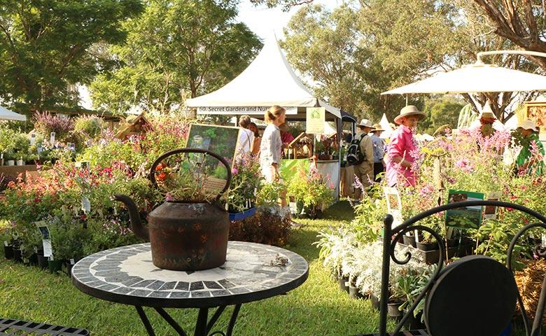 collectors plant fair