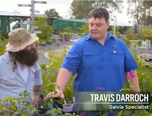 See us on Gardening Australia!